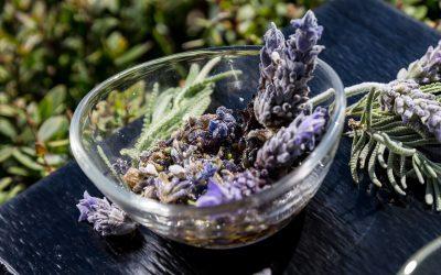 Perfumes de Mallorca