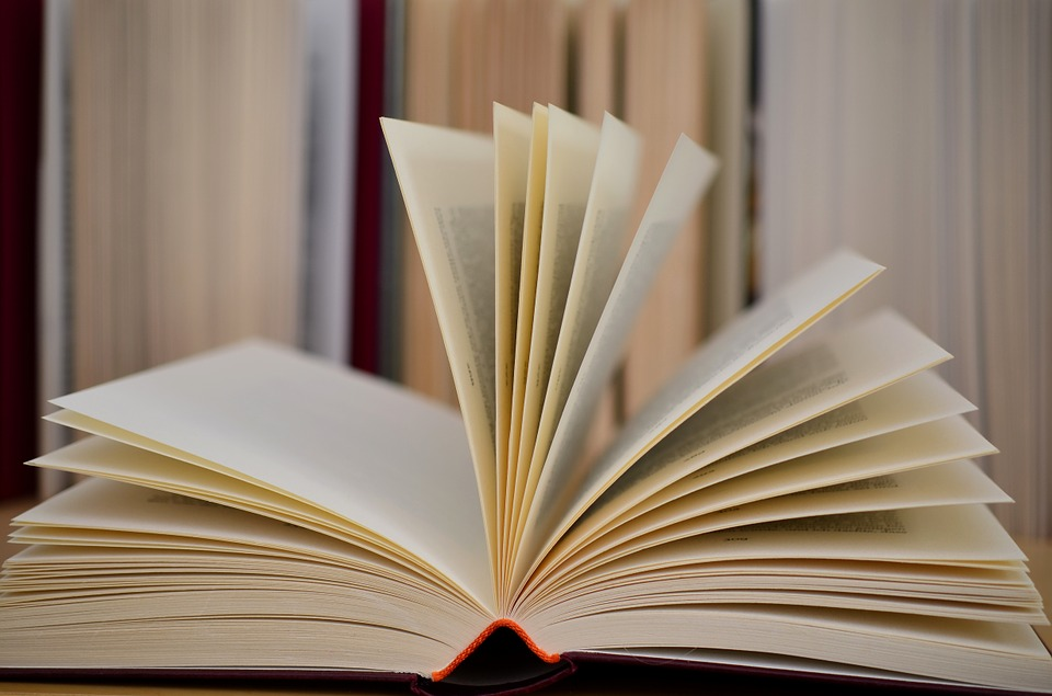 Los mejores libros ambientados en Mallorca