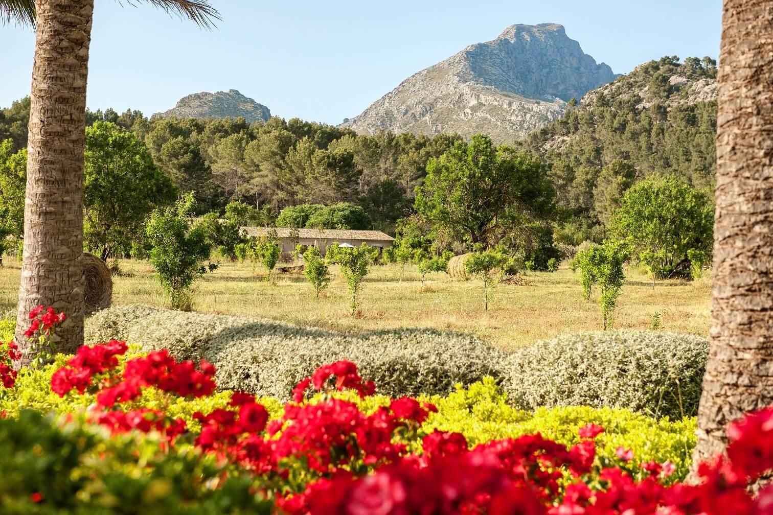 Castell Son Claret, el hotel de lujo en Mallorca (6)
