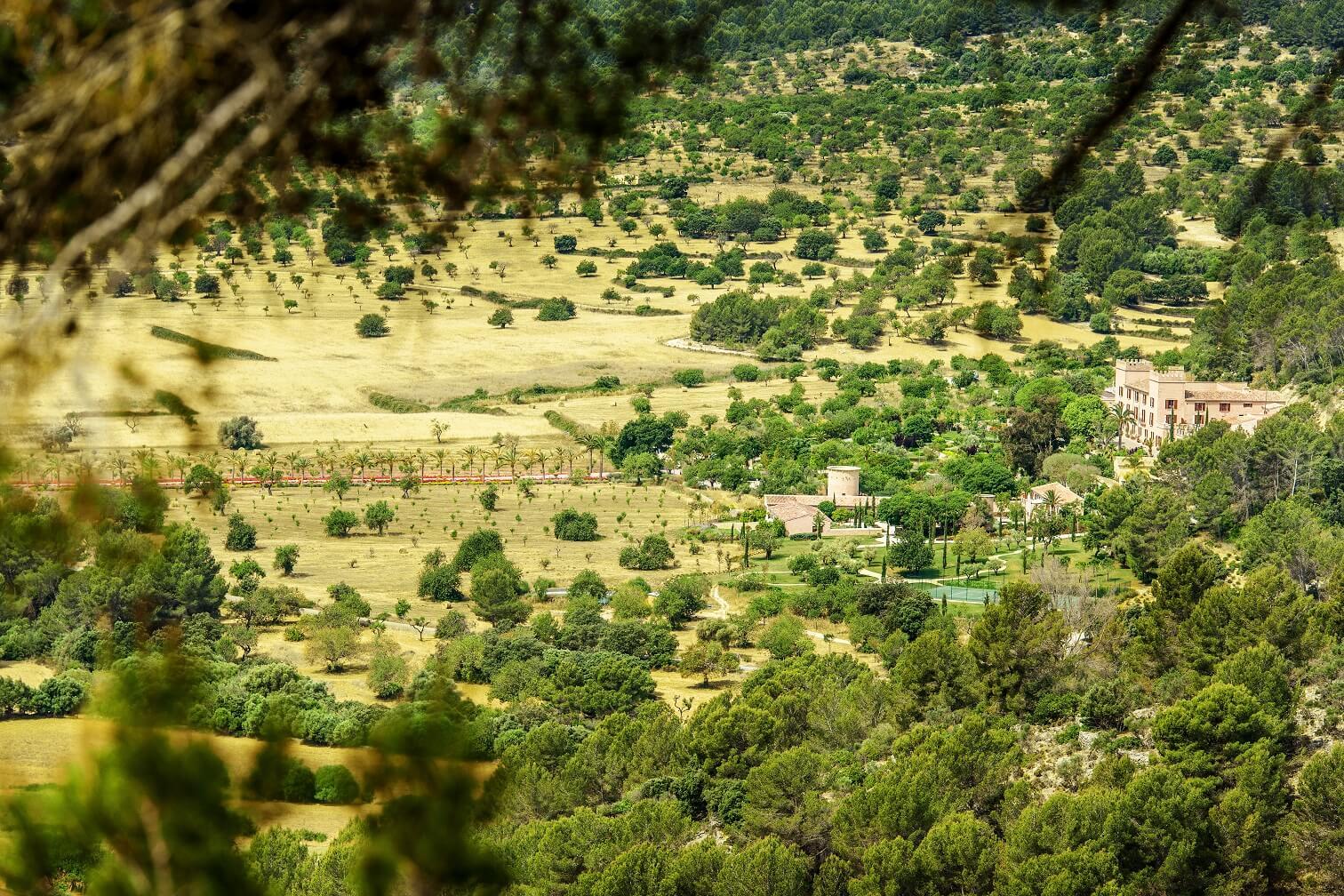 Naturaleza de Mallorca en el Hotel de lujo Castell son Claret (4)